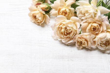 Photo for Yellow roses on a light background. Copy space. - Royalty Free Image