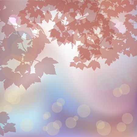 Foggy background with maple branches