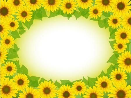 vector yellow sunflower postcard frame background pattern