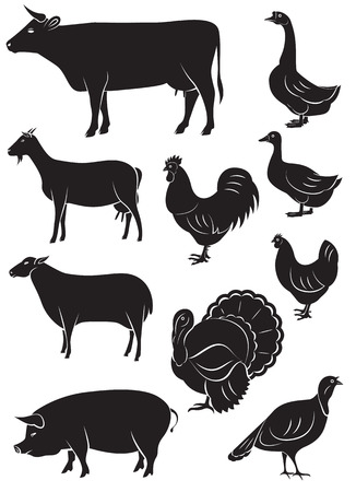 set of vector icons with farm animals and birdsのイラスト素材