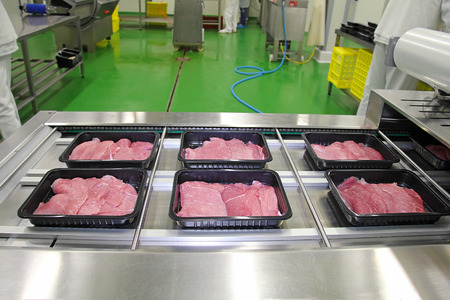 Packing of meat slices in boxes on a conveyor belt