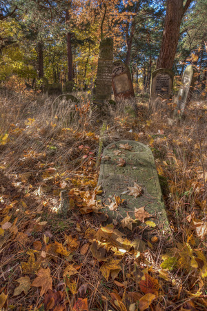 Otwock, Poland - October 28, 2015:  Devastated Jewish cemetary in Otwock town