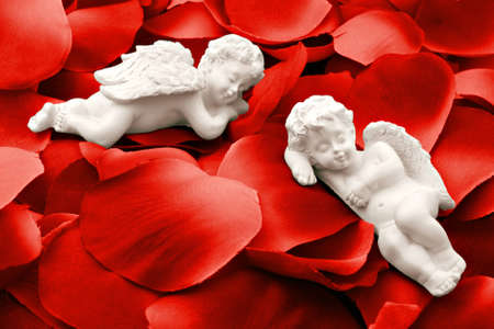 Two angels sleeping in valentine rose petals