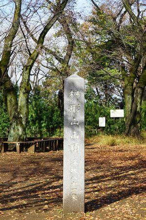 123wawa191200113