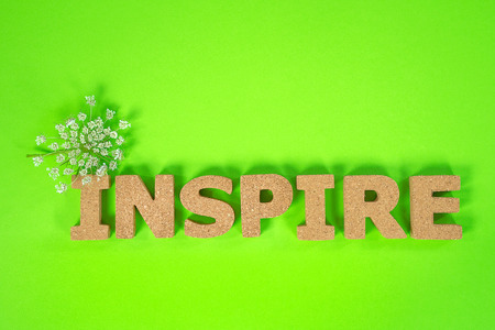 word inspire with Queen Anne's Lace on neon green background