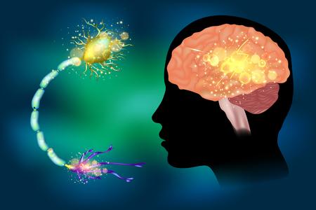 Illustration pour Seizures epilepsy. Anatomy of brain, electrical discharge. - image libre de droit