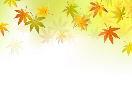 Autumn background - fall leaf - october season - yellow green to white background gradient - vector illustrationのイラスト素材