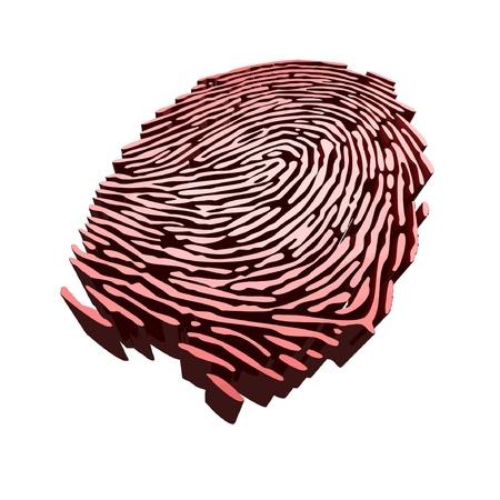 Vector - Digital fingerprint for authentication