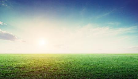 Photo pour Grass field landscape panoramic. Nature meadow summer - image libre de droit