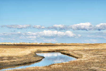 Dunes with water and reflections grasses in nice sunny weather, blue sky and clouds in spring