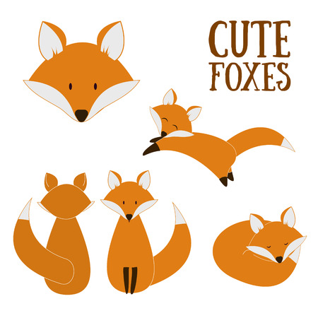 Set of cute foxes. Vector cartoon fox isolated on white. Sitting, sleeping, jumping fox. Flat design illustration.のイラスト素材