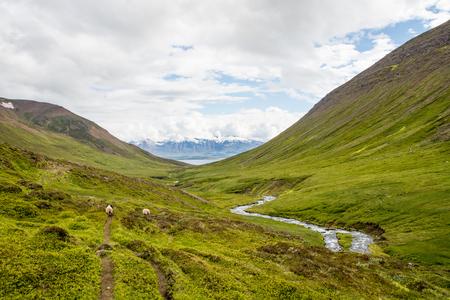 beautiful mountain range and landscape near Dalvik in Iceland