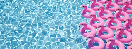 Photo pour 3D rendering. a lot of flamingo floats in a pool - image libre de droit