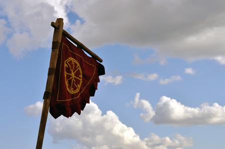 Flag of the Vikings