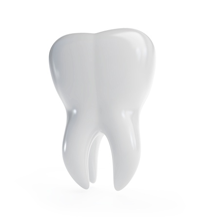 3d tooth is isolated on a white background