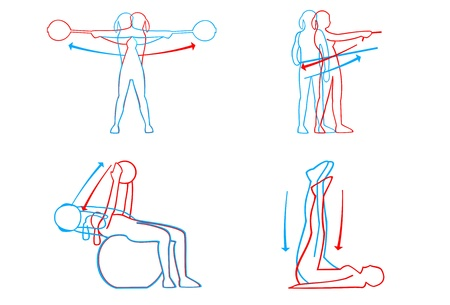 Illustration of fitness moves