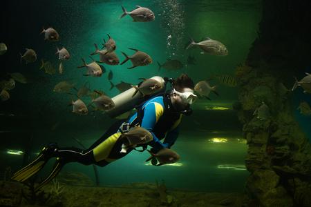 Photo pour Scuba diver surrounded by fish - image libre de droit
