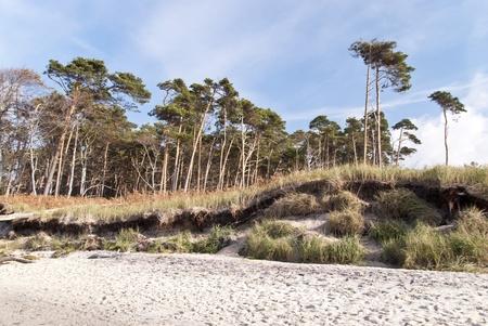 Baltic Sea Beach in Ahrenshoop, Germany