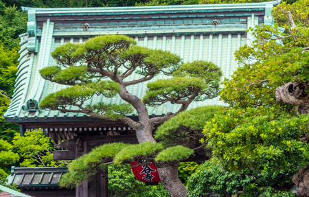Famous Hase Dera Temple in Kamakura Japan - travel photography