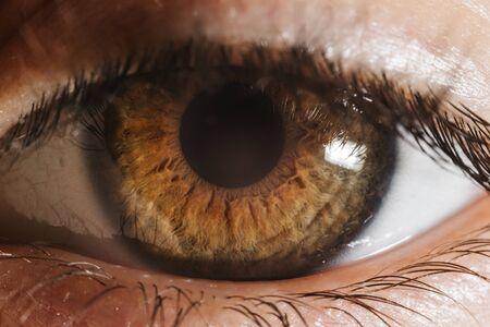 Macro brown eye shot with eyelashes