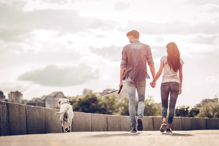 Photo pour Romantic couple is on a walk in the city with their dog labrador. Beautiful young woman and handsome man are having fun outdoors with golden retriever labrador. - image libre de droit