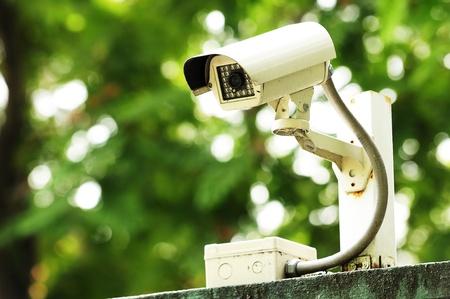 CCTV in garden