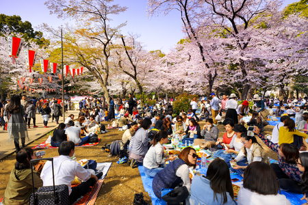 TOKYO JAPAN - MARCH 29, 2018 : Ueno Park, Unidentified tourists visit the cherry blossom. this phenomenon only once year. It is attractive to both Japanese and foreigners, most popular landmarks.