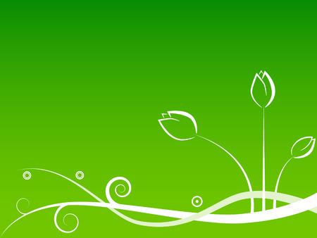 Foto per pattern with white flowers on green background - Immagine Royalty Free