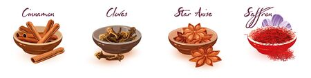 Illustration pour Vector set with assortment of brown, red asian dried spices, condiments and lettering cinnamon, cloves, star anise, saffron. Cartoon collection isolated on white background. - image libre de droit