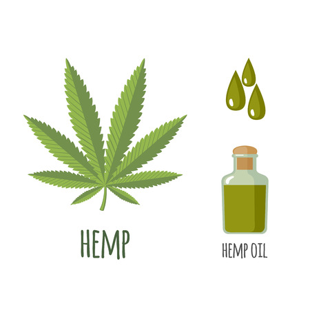 Illustration pour Superfood hemp set in flat style: hemp leaves, oil. Organic healthy food. Isolated objects on white background. Vector illustration - image libre de droit