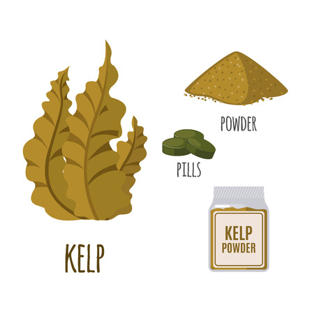 Illustration pour Superfood kelp set in flat style: algae, powder, pills. Organic healthy food. Isolated objects on white background. Vector illustration - image libre de droit