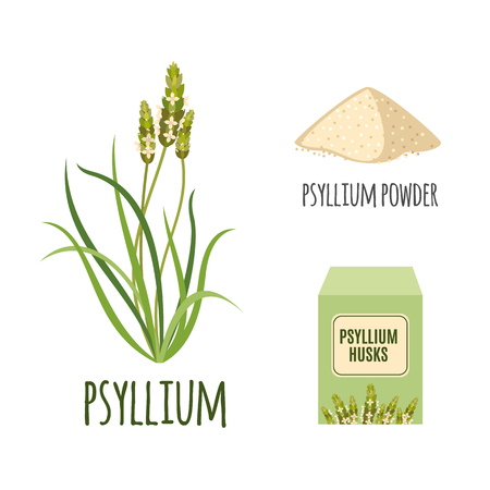 Illustration pour Superfood psyllium set in flat style: psyllium grass, powder, husks. Organic healthy food. Isolated objects on white background. Vector illustration - image libre de droit
