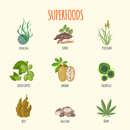 Illustration pour Set of superfoods in flat style. Healthy lifestyle. Fruits, vegetables, aglaes and herbs for health. Vector illustration - image libre de droit