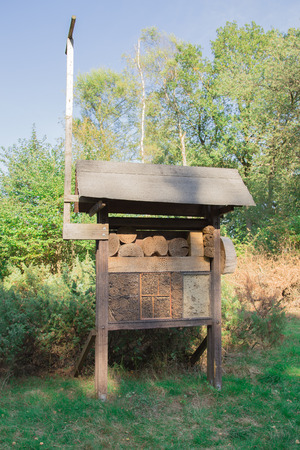Insect hotel in the forest on green meadow