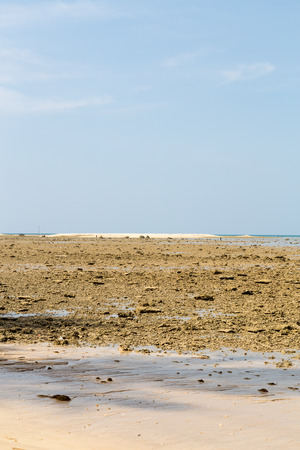 Low tide on a sandy beach with blue sky.