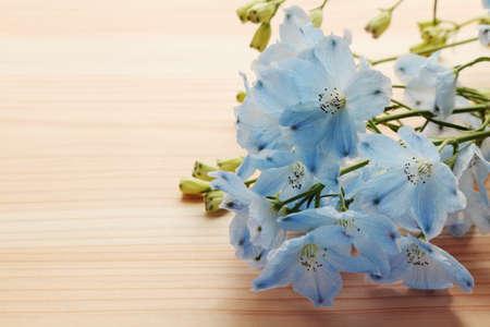 Photo pour Light blue delphinium on wooden background - image libre de droit