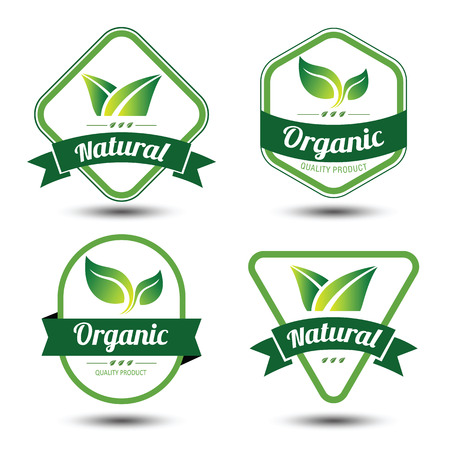 Set of eco labels and badges,emblem with leaves ,vector illustrationのイラスト素材