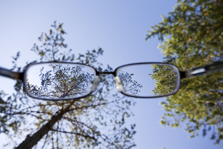 trees and blue sky through the glasses
