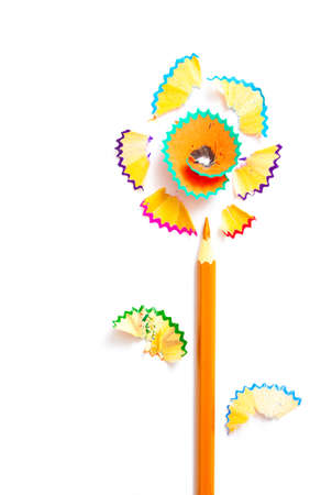 one pencil flower on white backdrop with copy space