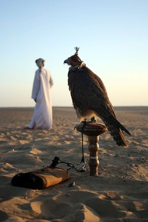 An Arab Man with his Falcon in the Desrert