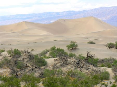 Sand dunes in the Death Valley National Park
