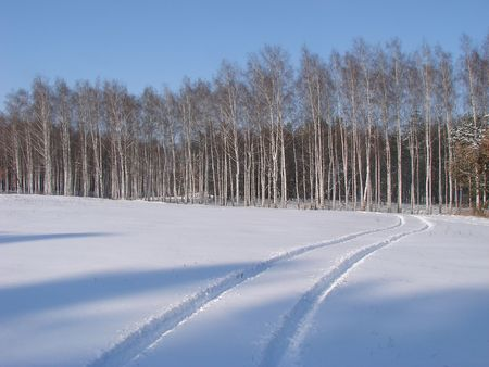 Winter snowy road thru forest