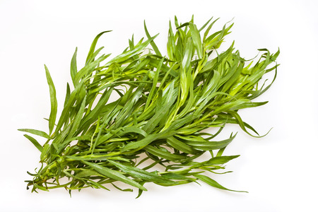 Close-up view of the leaves of the Tarragon