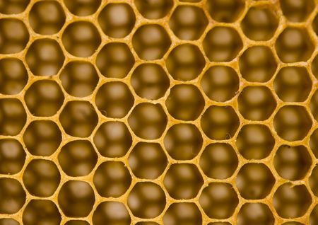 Honey is a sweet and viscous fluid produced by bees and other insects from the nectar of flowers.