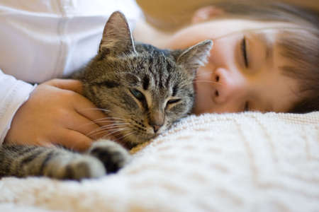 sleeping girl with cat