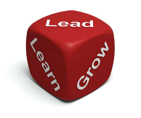 Red Dice with words Learn, Grow, Lead on faces