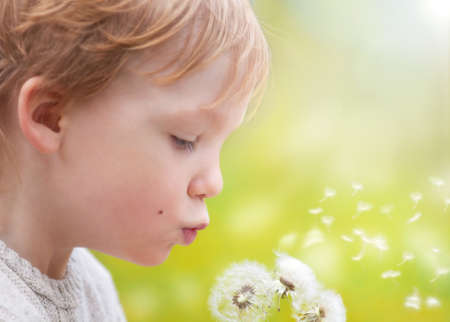 Young blond kid in the meadow blowing wishes on dandelion seedの写真素材