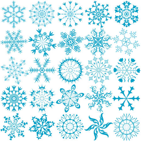 Big collection blue snowflakes (vector)