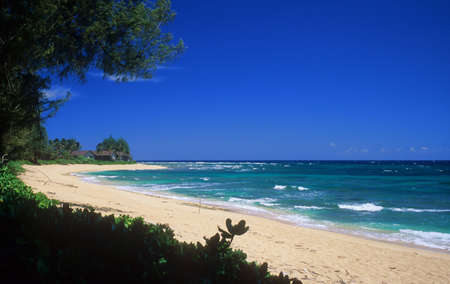 Empty tropical beach on the beautiful north shore of Kauai Hawaii.