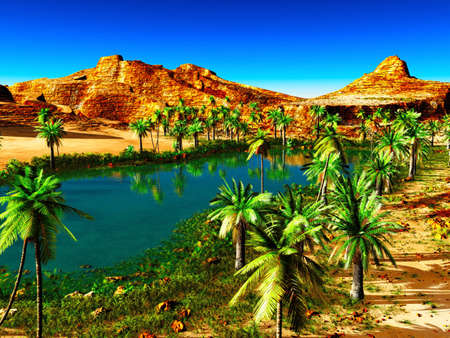 African oasis - beautiful na